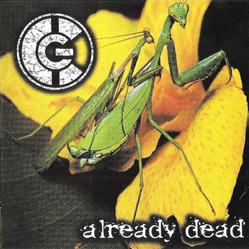 Haemorrhage - Groinchurn Surgery For The Dead - I Don't Think So